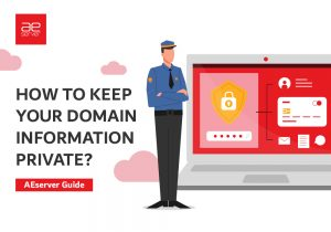Read more about the article How to Keep Your Domain Information Private?